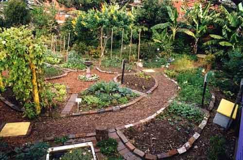 permaculture-gardening.jpg